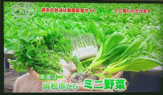 テレビ放送のお知らせ!!