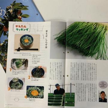 11月のとぴあ浜松 広報誌